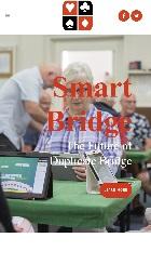 Smart Bridge mobile image